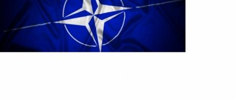 NATO: Guardian of peace or bellicose bully? spotlight image