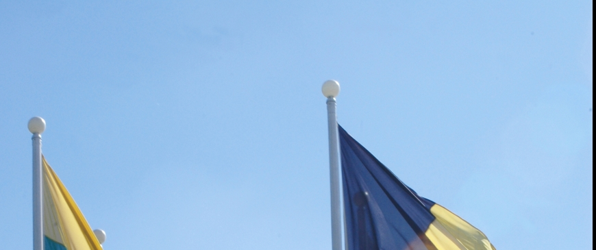 EU foreign policy must not become a casualty of the euro crisis spotlight image