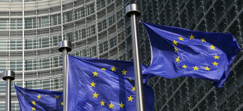 The EU's Court of Auditors: Europe's sleeping giant? spotlight image
