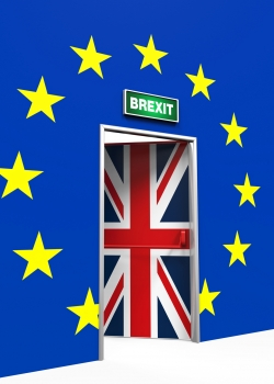 Why leaving the EU really does mean Brexit