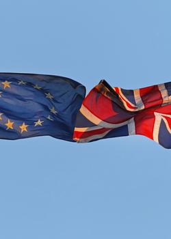 Webinar on 'What kind of EU-UK relationship, post-Brexit?' with João Vale de Almeida, EU Ambassador to the UK